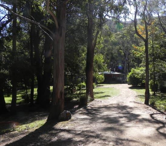 Serra Halls Gap