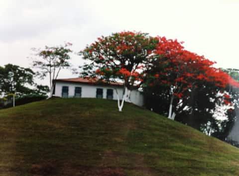 Casa de campo dentro da cidade