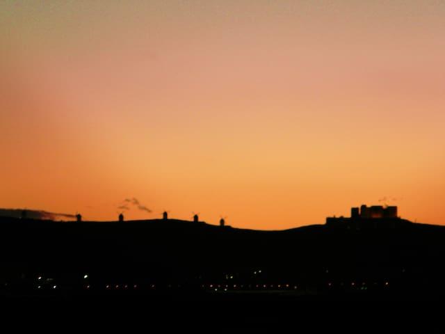 La Mancha experience. - Madridejos