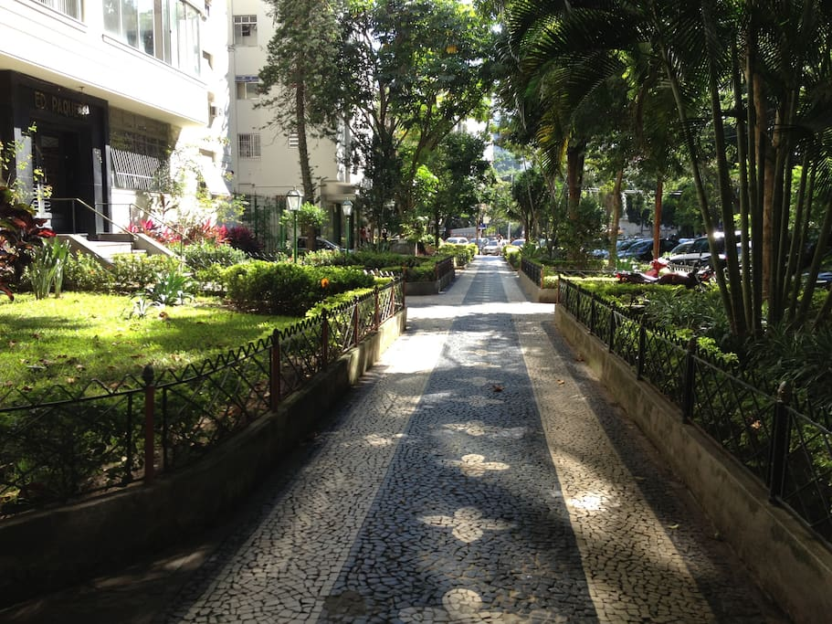 Rua calma e arborizada