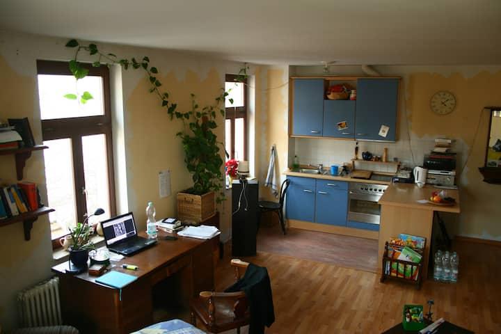 Gemütliche 1-Raum-Wohnung in Plagwitz