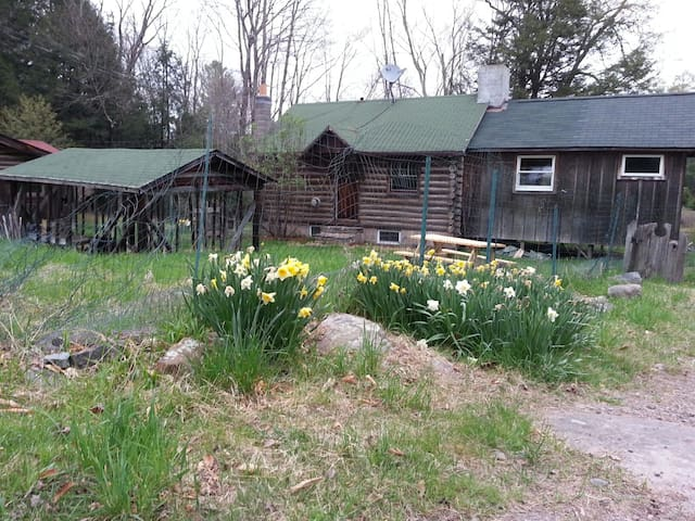 Romantic Log Cabin in the Woods - Monticello - Hus