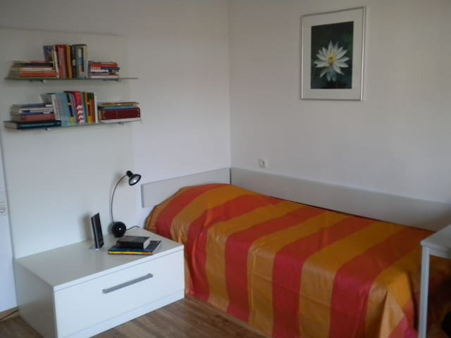 Quiet room close to Mainz, Wiesbaden, Frankfurt - Wiesbaden