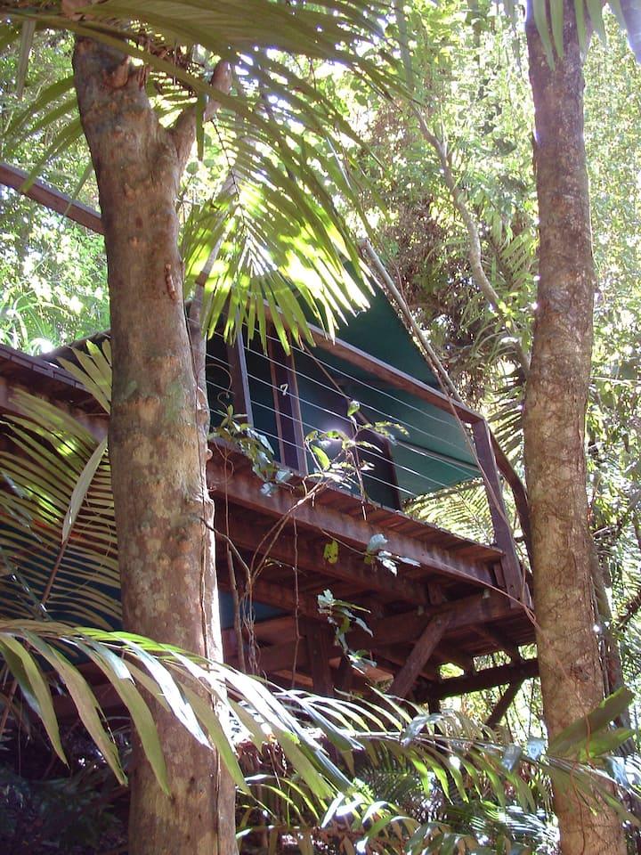 Rainforest Hut - Double Bed (shared bathroom)