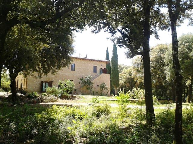 Ripa, casale nel bosco vicino Siena - Monteriggioni - Apartament