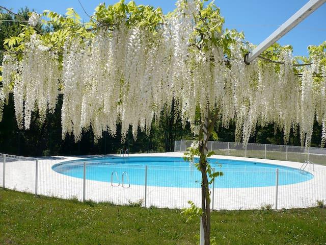 Studio dans résidence avec piscine - Valbonne - Daire