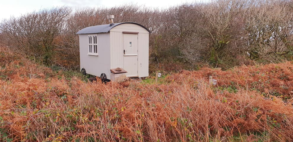 St.Ives Glamping: The Lookout Shepherd's Hut