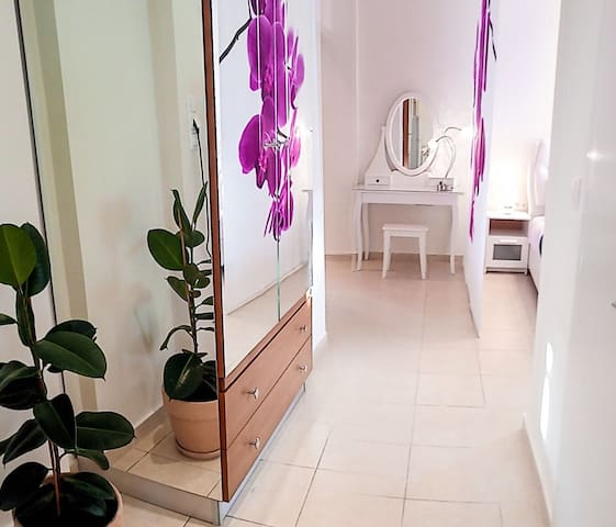 Orchid Studio 2