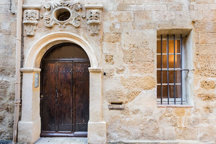 DUO-LOFT HISTORIC MANSION OLD CITY - Aix-en-Provence - Loft