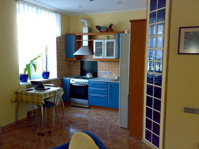 Nice flat in a nice place - Kiev - Apartmen