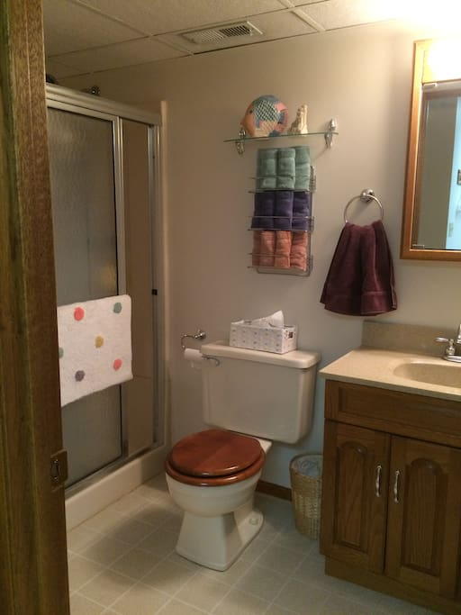 Private bathroom with shower only (no tub), towels, soap, toilet paper, tissues, and hair dryer.