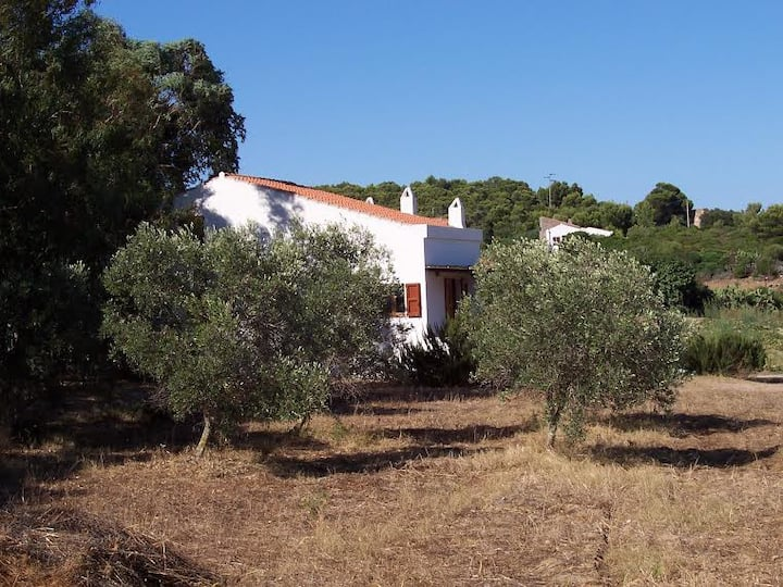 SARDINIAN HOUSE AMONG THE GREEN