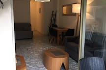Grand studio centre 35 m2 +30 m2 de jardin