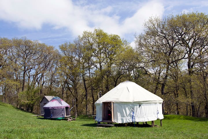 Two Welsh yurts - Tylwch - Jurta