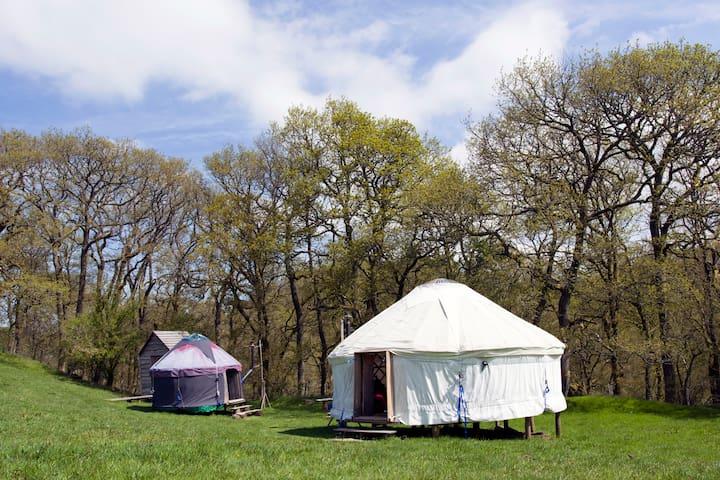 Two Welsh yurts - Tylwch - Yurt
