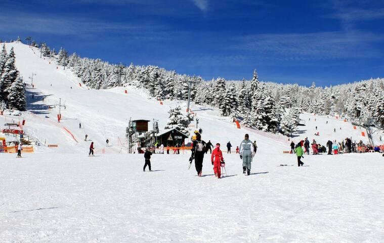 station de ski à 200 metres