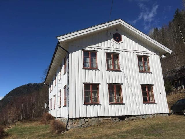 Stor gårdsbolig nærme Vrådal skisenter 12 senger