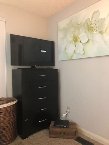 Private guest bedroom television