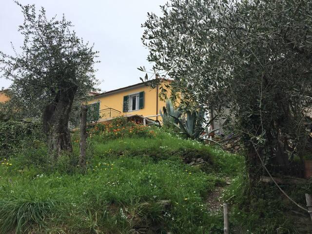 Casa su due livelli immersa nella natura ligure