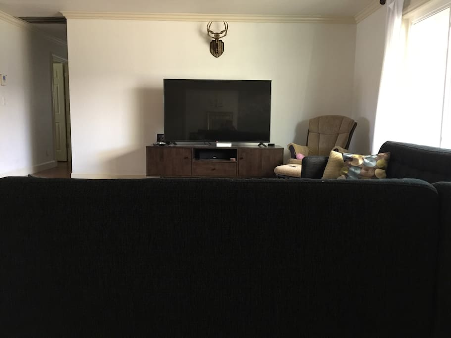 65in TV viewable from living/dining/backyard