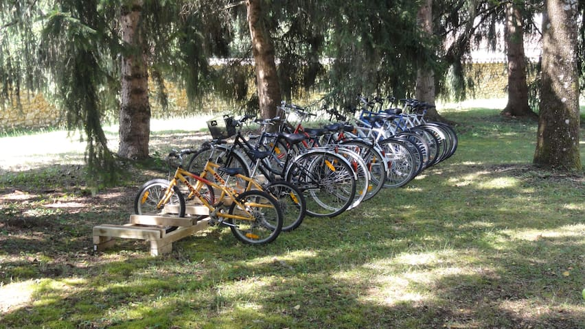 les vélos à votre disposition