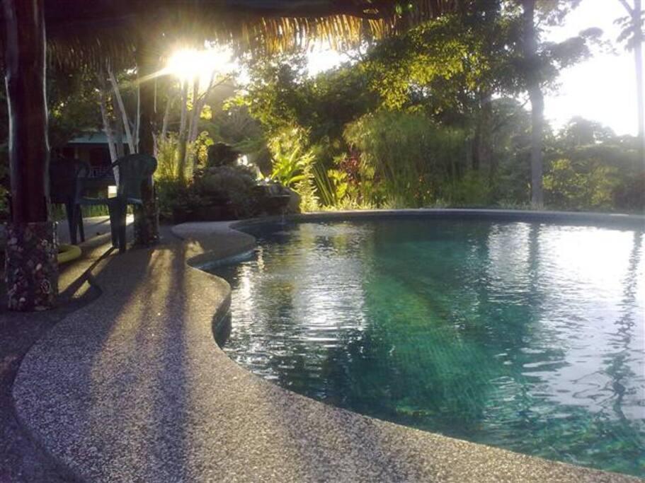 warm salt water pool