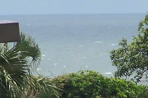 Oceanview Condo -overlooks pool/100 yards to beach