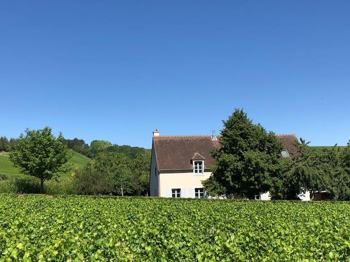 La Maison Pichon  Au coeur des vignes vue Sancerre