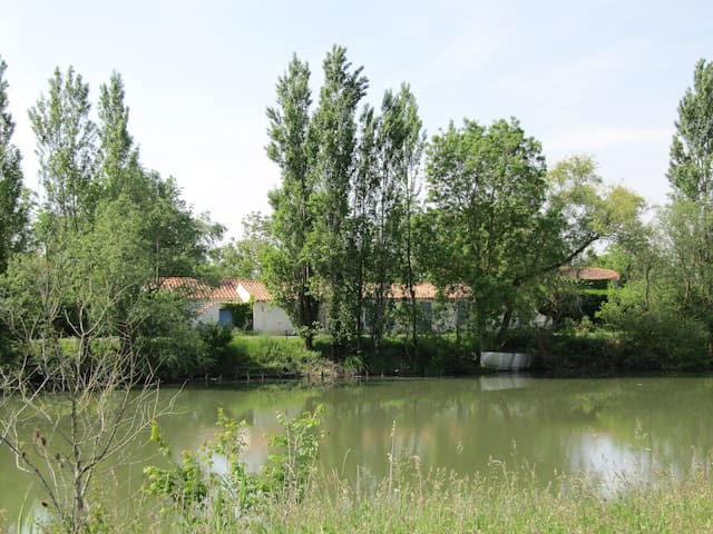 Le Moulin du Pomère, en bordure de rivière. - L'Île-d'Elle - Lejlighed