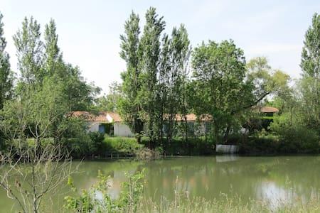 Le Moulin du Pomère, en bordure de rivière. - L'Île-d'Elle - 公寓