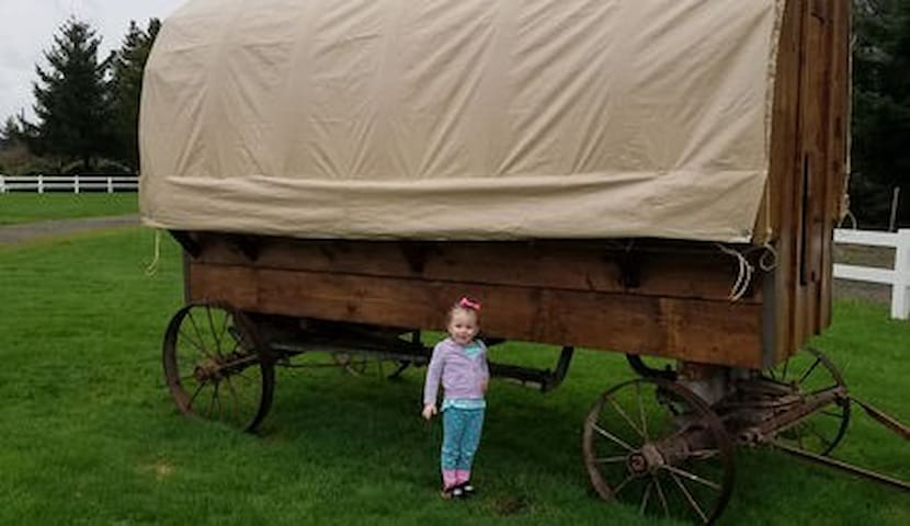Twins Ranch Covered Wagon # 2