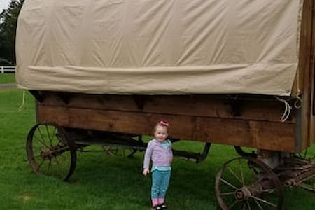 Twins Ranch Covered Wagon # 1
