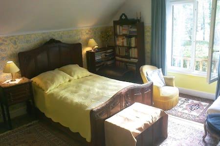 Toile de Jouy bedroom - Nogent-sur-Seine