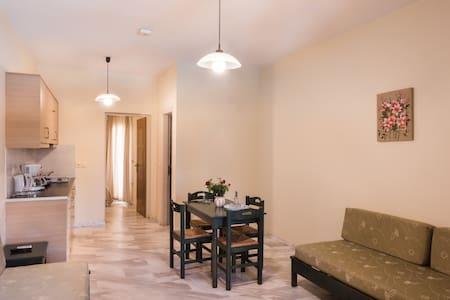 One Bedroom Apartment 2 - 干尼亞 - 公寓