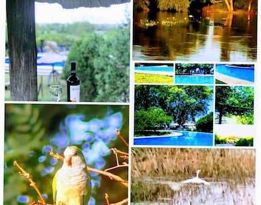 Apart Club.  Campo, río. Piscina. Ambiente Natural
