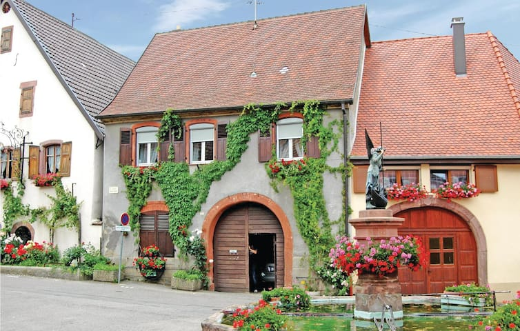 Holiday cottage with 2 bedrooms on 55m² in Pfaffenheim