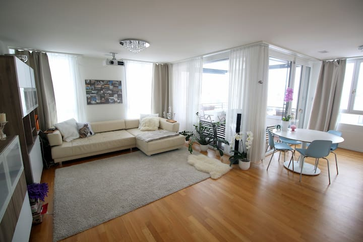 Modern, Bright Apt with Great View - Adliswil - Pis