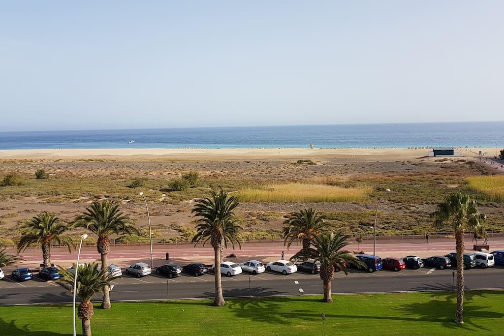 just in front of the ocean and El Saladar natural reserve /justo frente al océano y a la reserva natural El Saladar / proprio davanti all'oceano e alla riserva naturale El Saladar