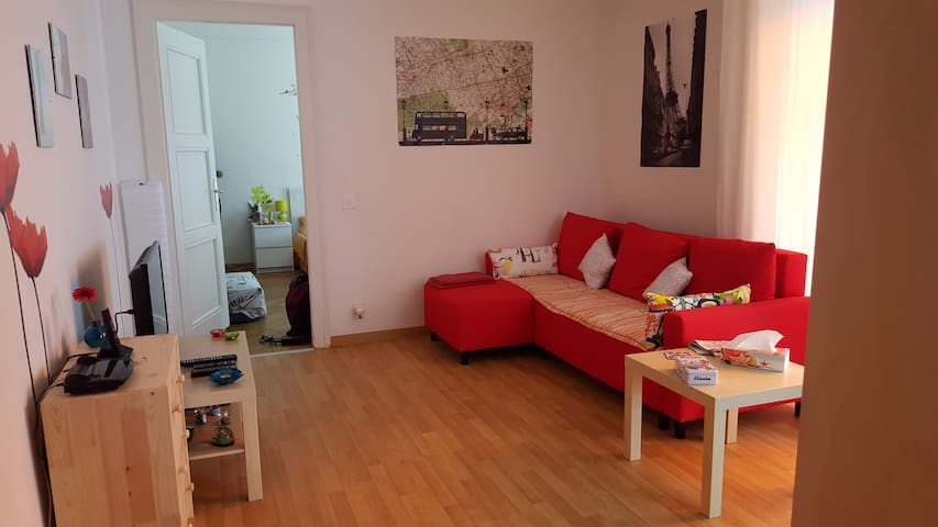 Spacious flat in the heart of Lausanne - Lausanne - Pis
