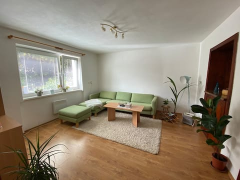 Whole apartment with fireplace in city centre