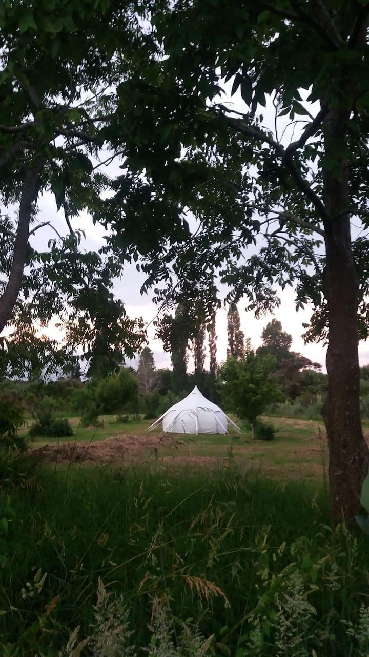Special Camping ! Whenua Tupu