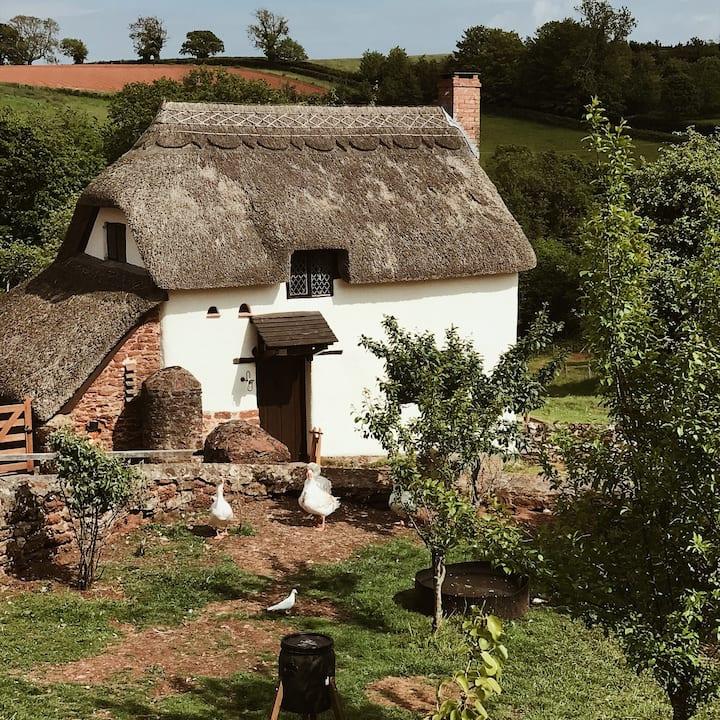 Idyllic thatched cottage on Devon farm