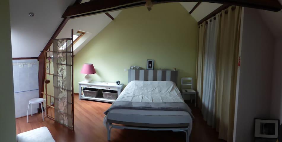 Chambre très spacieuse et agrèable terrasse