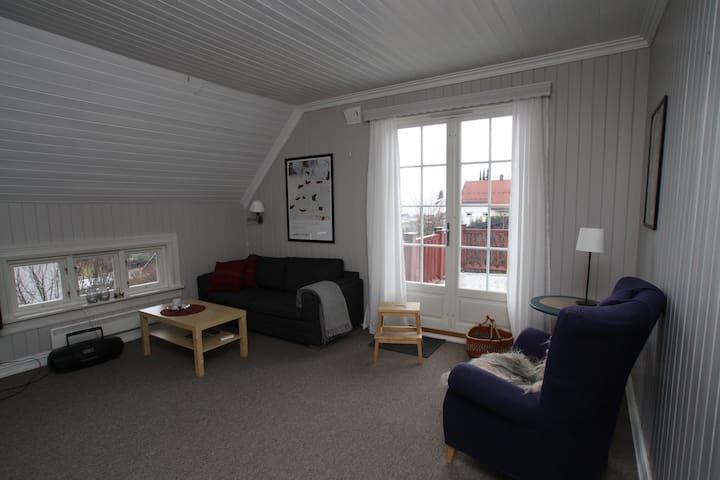 Sjarmerende leilighet  med utsikt - Hamar - Lägenhet