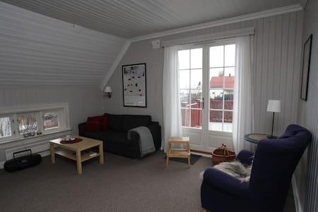 Sjarmerende leilighet  med utsikt - Hamar