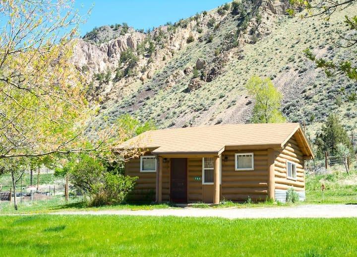 Yellowstone Hot Spring Cabin #4