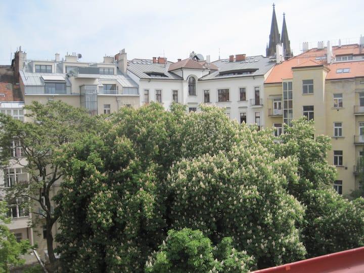 PRIVATE COSY ROOM - IN PRAGUE CENTRE!