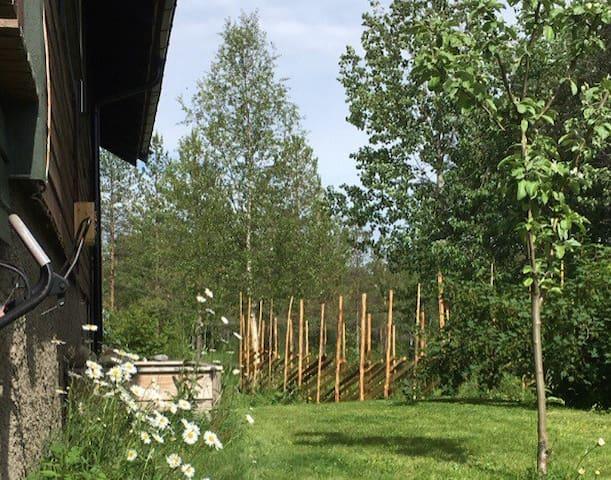 Hus nær Namsskogan familiepark