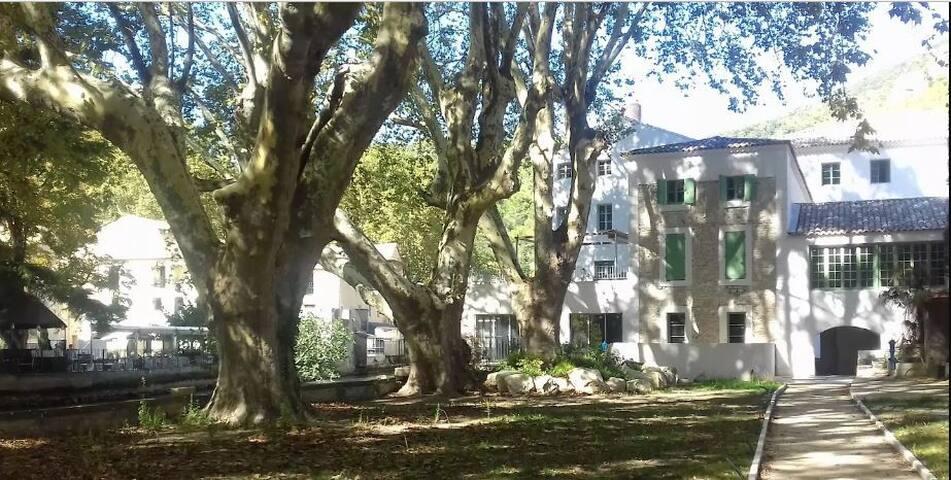 Appartement Fontaine de vaucluse