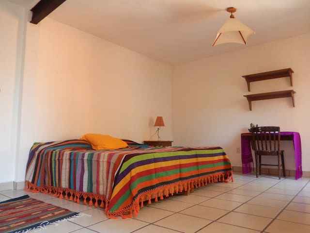 Spacious room in Historical House - Mexico City - Hus